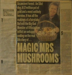 brigitte tee mrs mushrooms zeitungsartikel